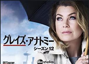 海外ドラマ|グレイズ・アナトミー シーズン12の動画を無料視聴できる配信サイト