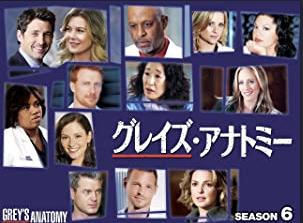 海外ドラマ|グレイズ・アナトミー シーズン6の動画を無料視聴できる配信サイト