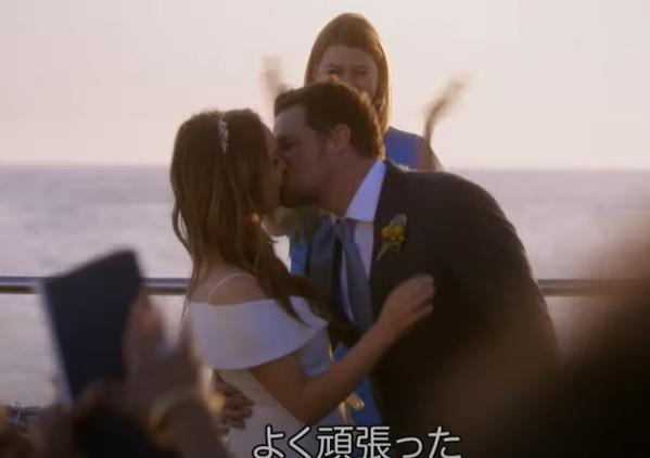 海外ドラマ グレイズ・アナトミー シーズン15の動画を無料視聴できる配信サイト